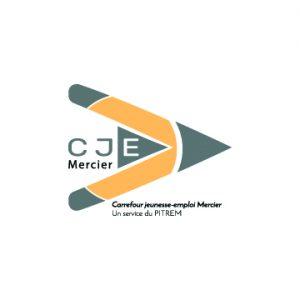 Logo_PITREMArtboard 1-100