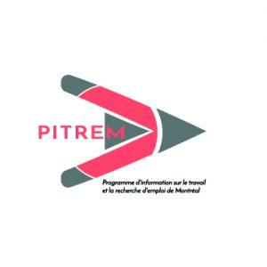 Logo_PITREMArtboard 2-100